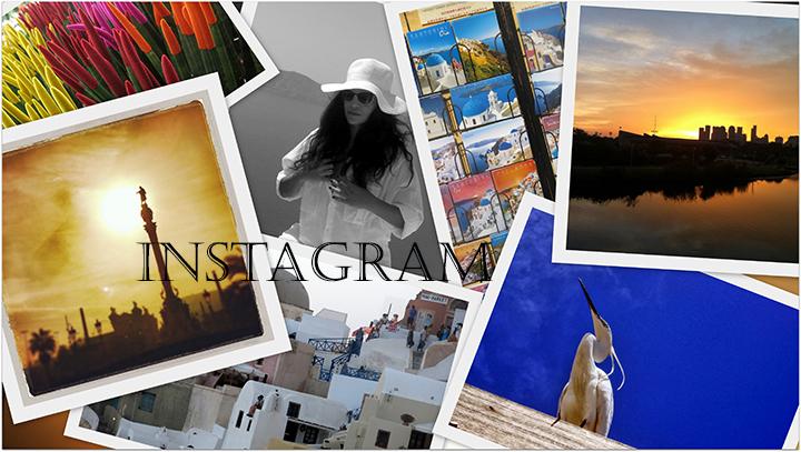 instagram-seminar-2014