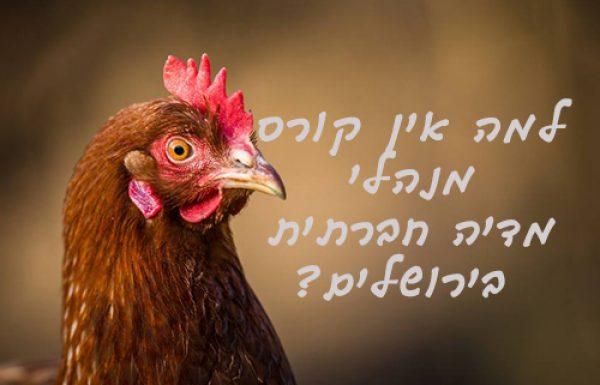 למה אין קורס מנהלי מדיה חברתית בירושלים?